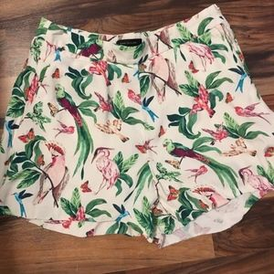 Ann Taylor Bird Printed Shorts Size 8